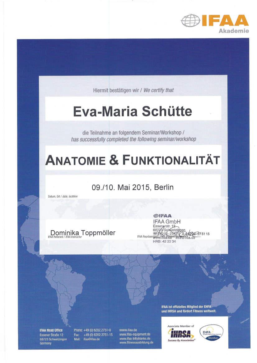 Anatomie_und_Funktionalität
